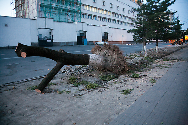 Убийство Новороссийска продолжается.