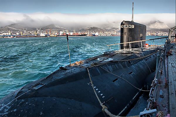 Подводный гость