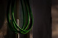 Зеленая тоска