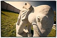 Про злого слона