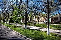 Улица Победы